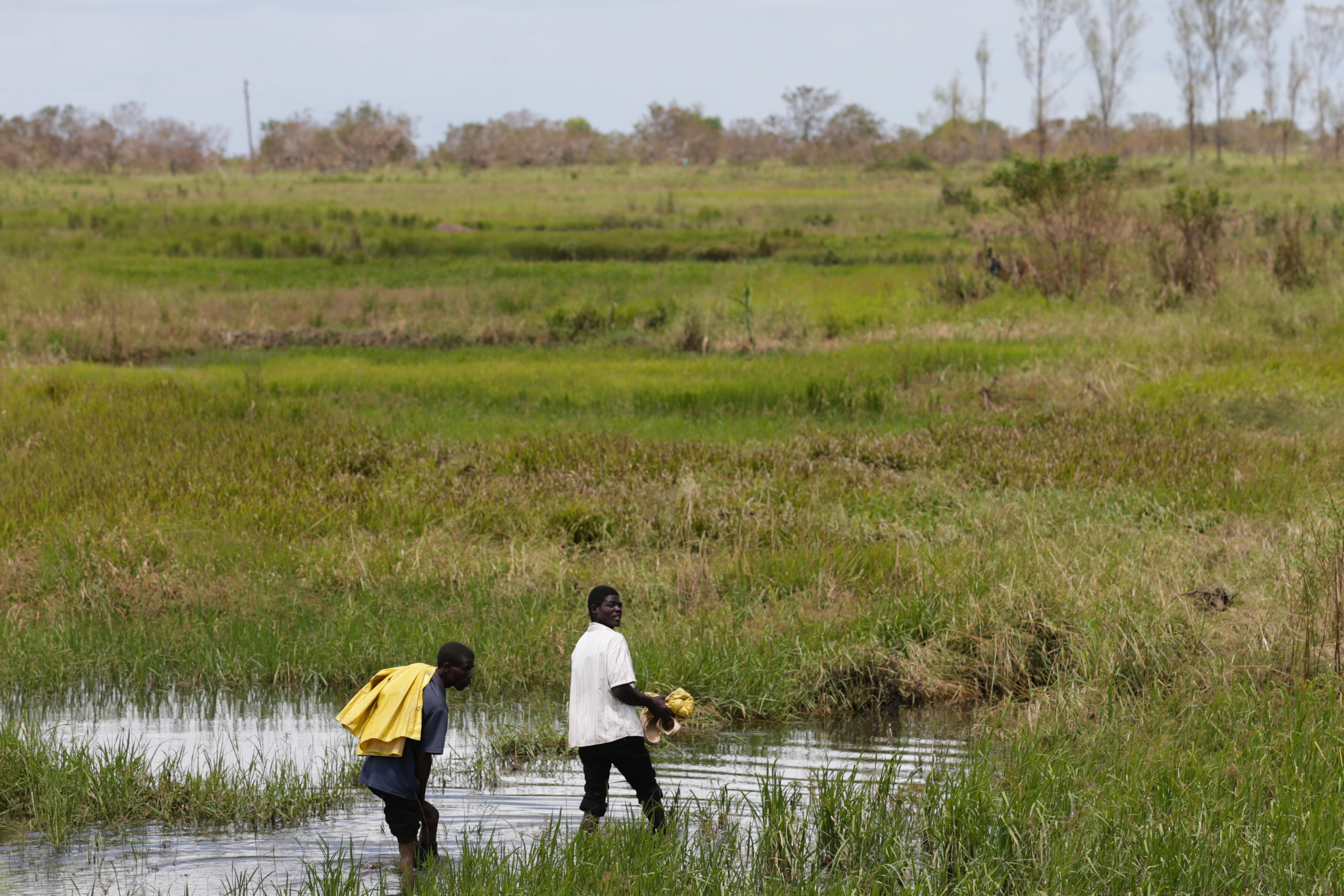 Governo moçambicano diz que situação está controlada após chuvas intensas em Sofala