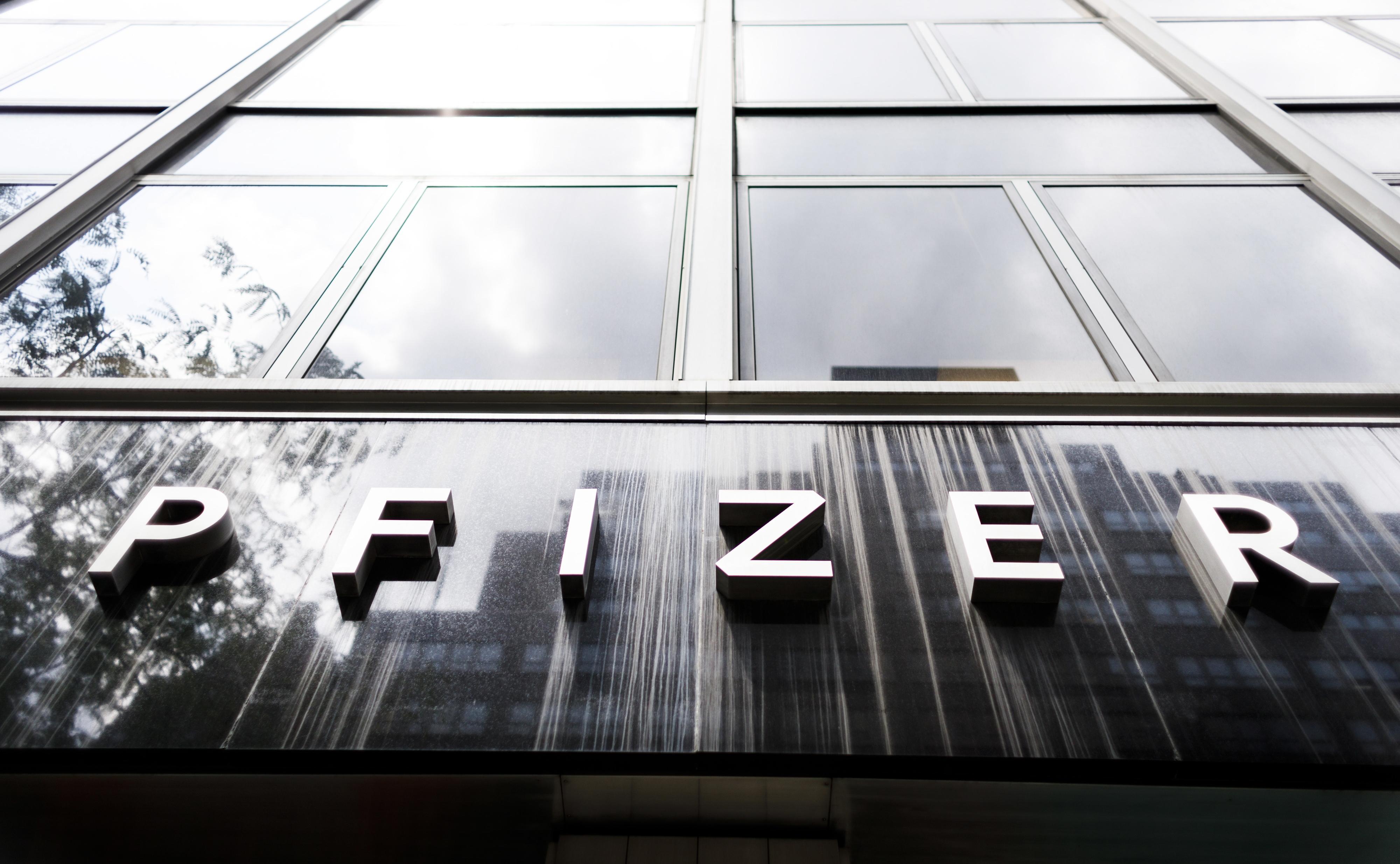 Prémios Pfizer distinguem investigação sobre bactérias, antibióticos e cancro