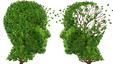 Imagem Videojogo simula os sintomas da doença de Alzheimer
