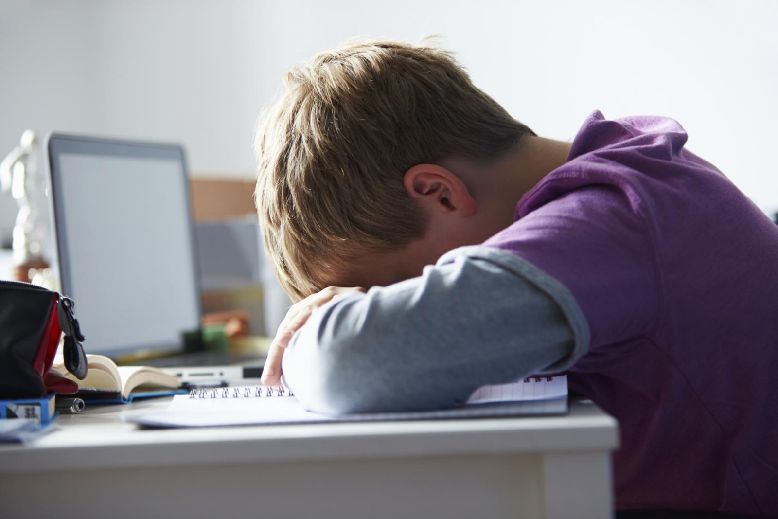 Contos com mensagens sobre bullying e deficiência distribuídos por milhares de crianças
