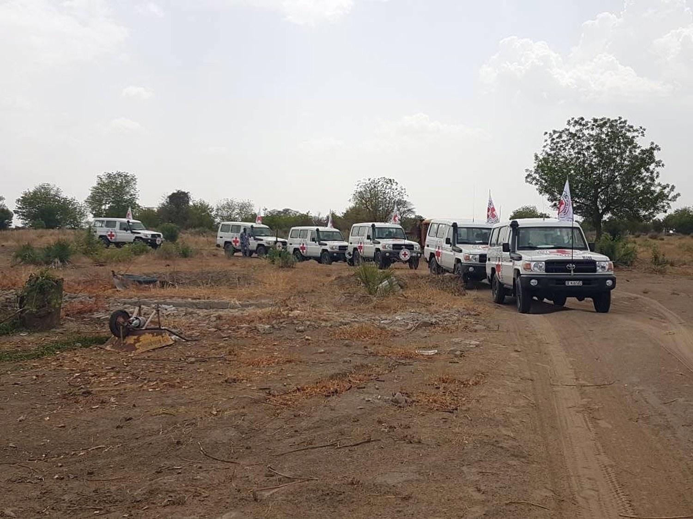 Raptadas 14 pessoas incluindo dois funcionários da Cruz Vermelha na Nigéria
