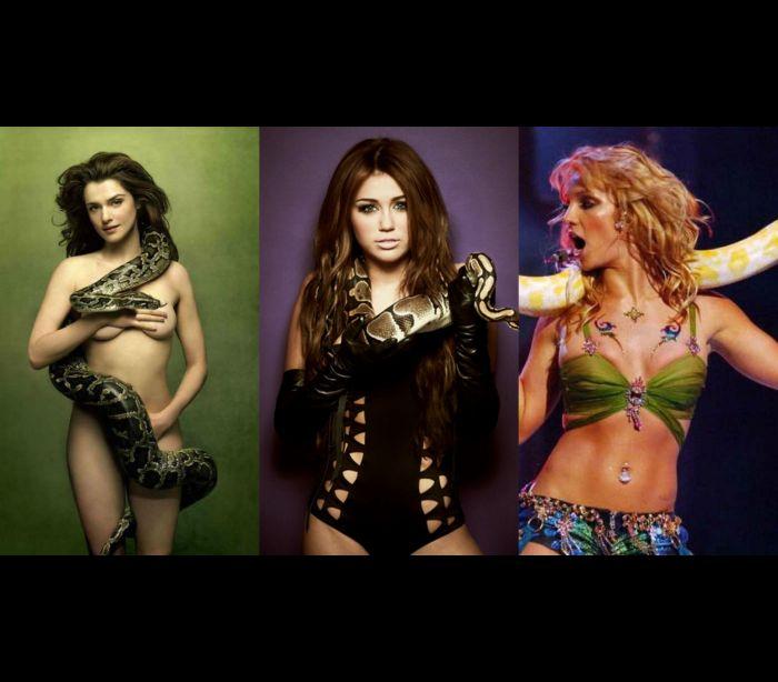 Conheça as famosas que já posaram com cobras