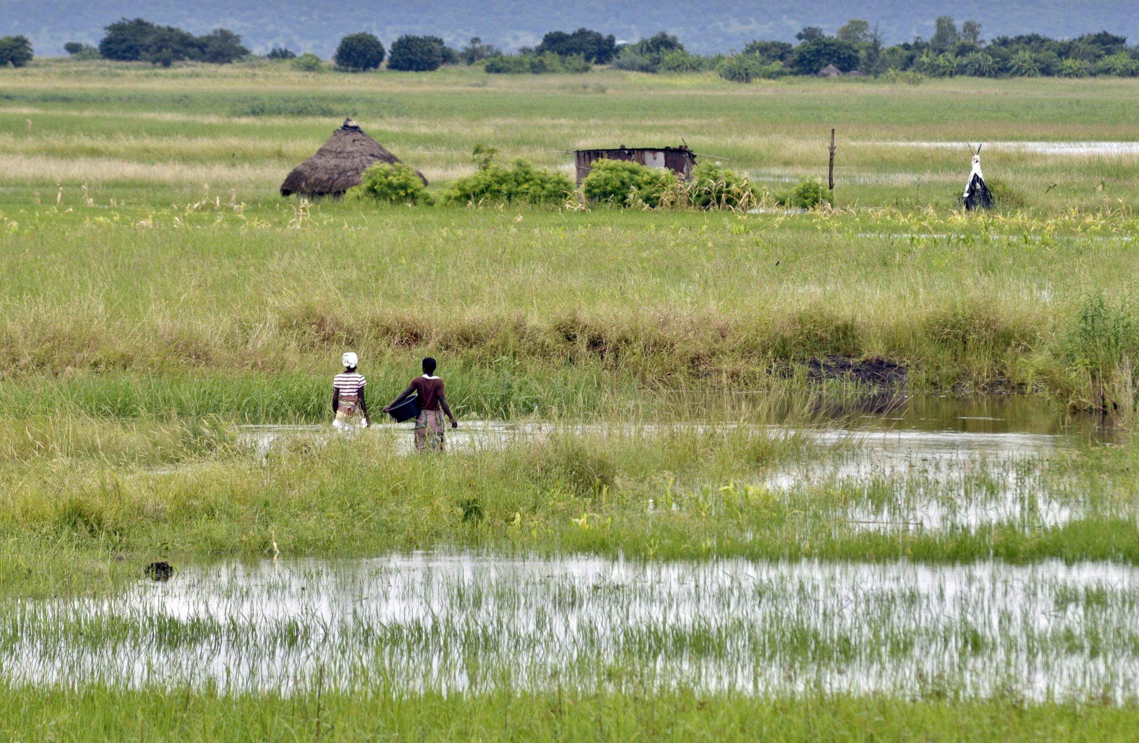 Cheias e ciclones vão afetar 1,5 milhões de pessoas em Moçambique, estima Governo
