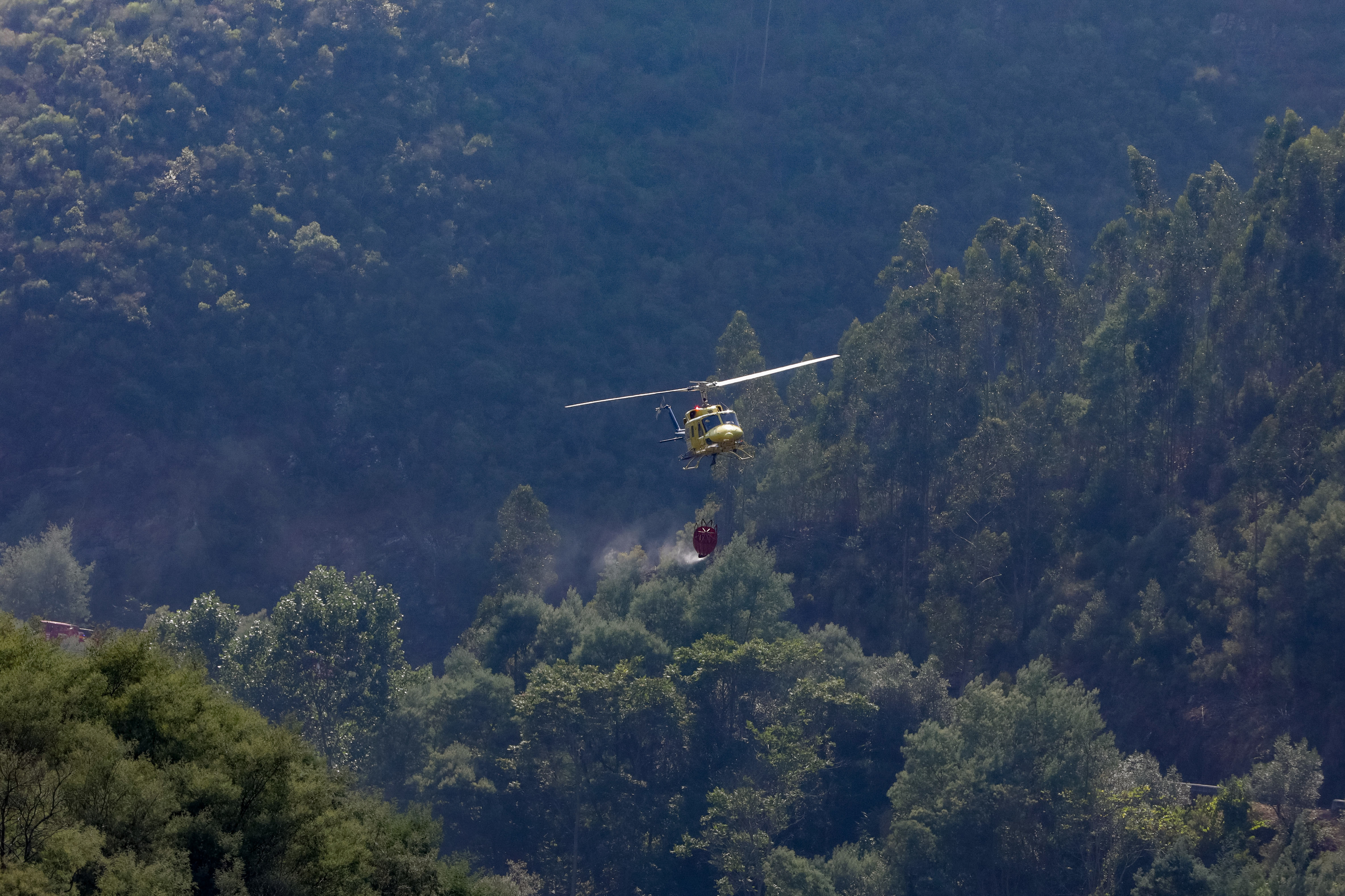 80 bombeiros e dois meios aéreos combatem fogo em Barcelos