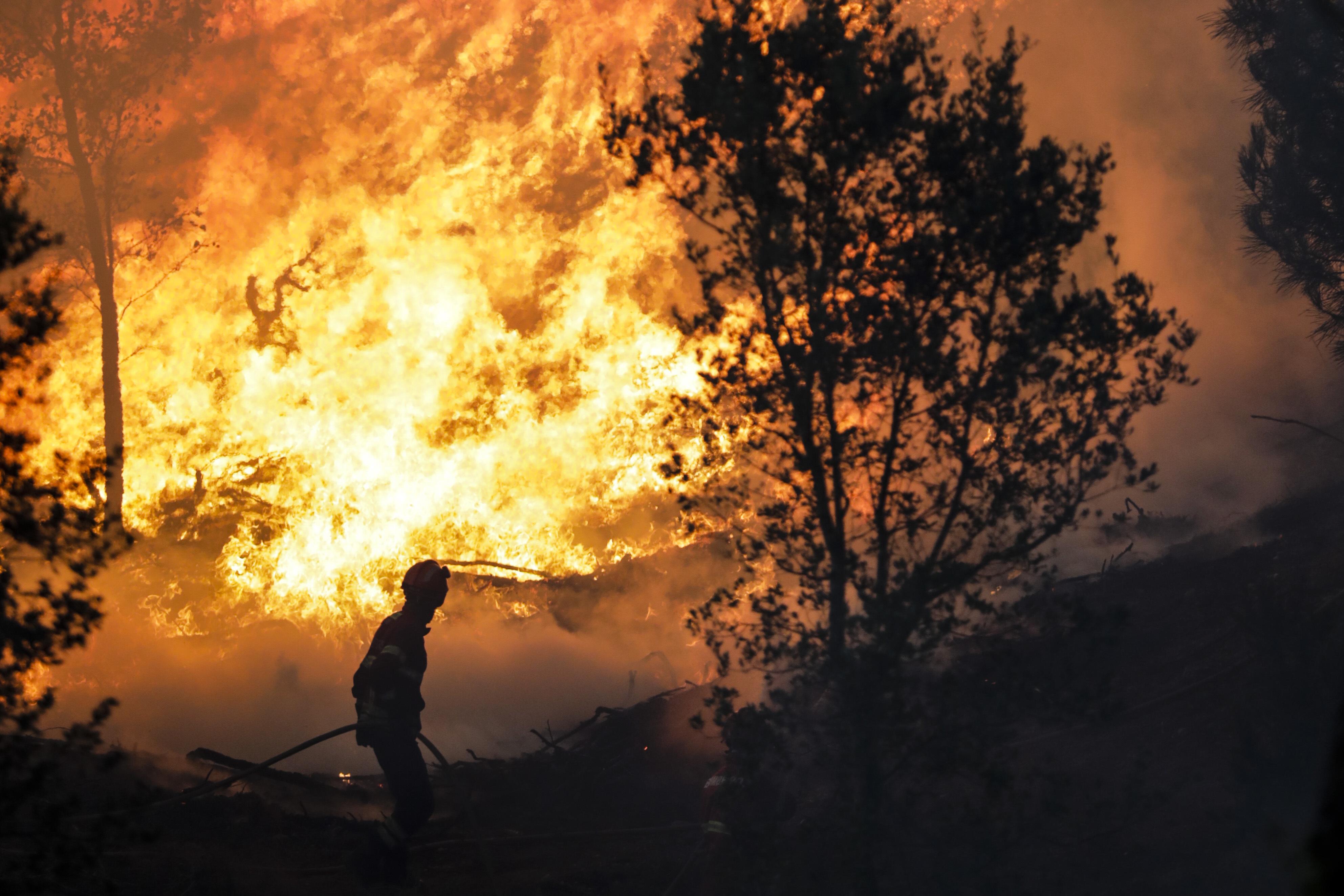 84% dos fogos provocaram menos de um hectare de área ardida