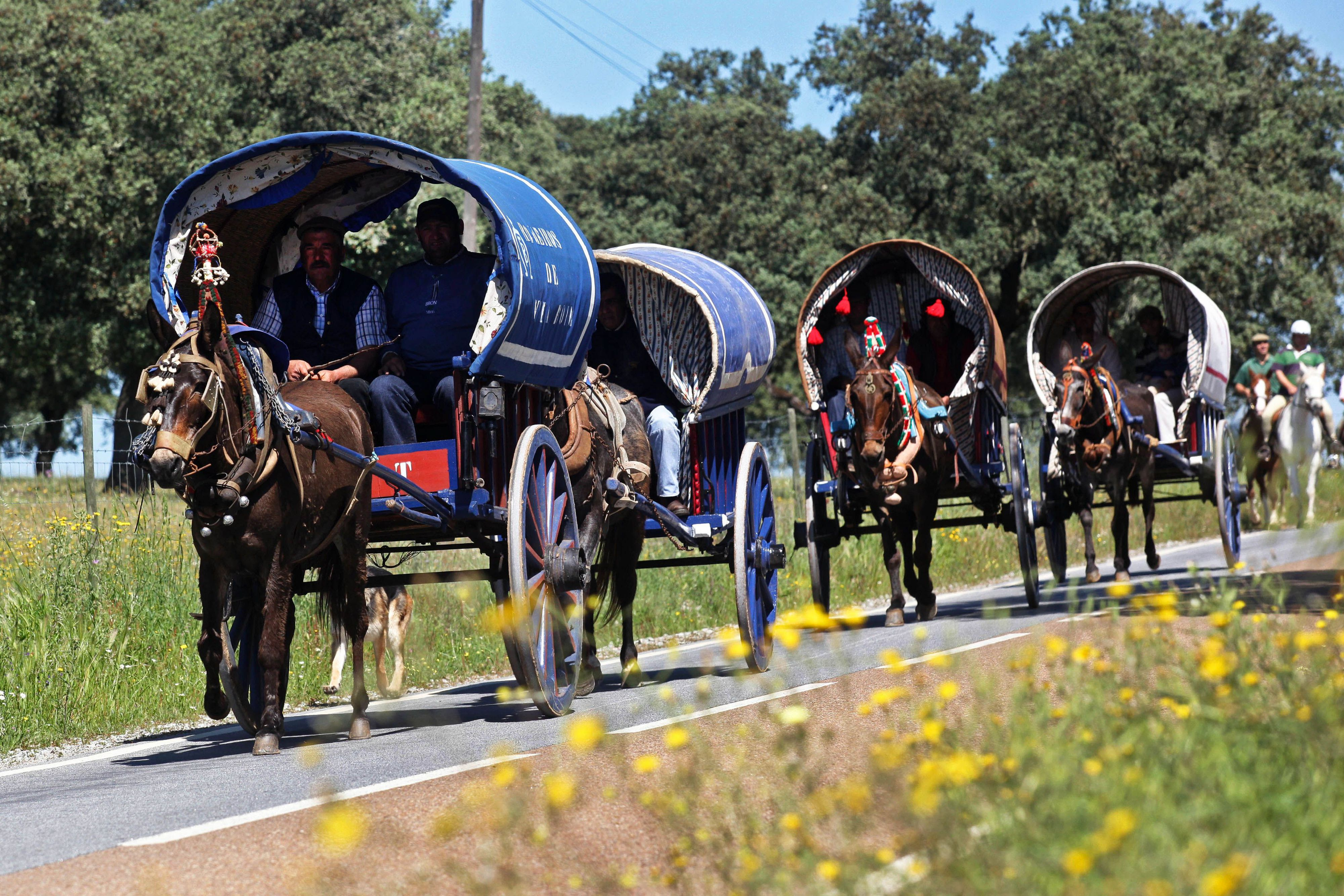 Mais de 300 pessoas participam na romaria a cavalo entre a Moita e Viana do Alentejo