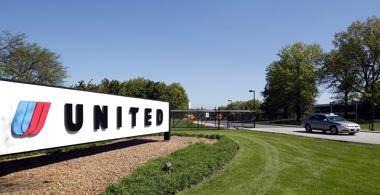 United Airlines investiga morte de coelho gigante durante um dos seus voos