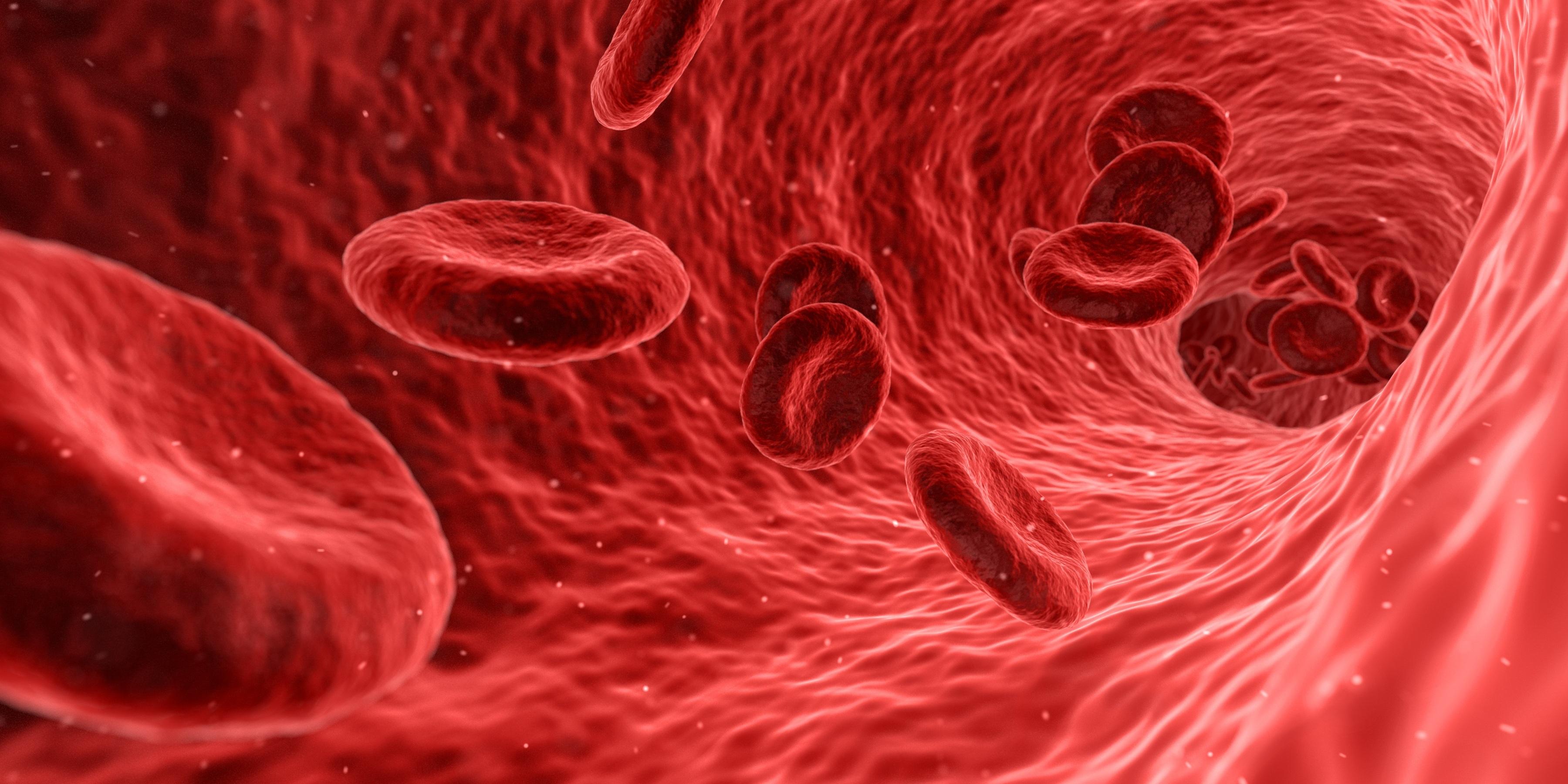 Novo exame de sangue deteta recidiva de cancro com um ano de antecedência