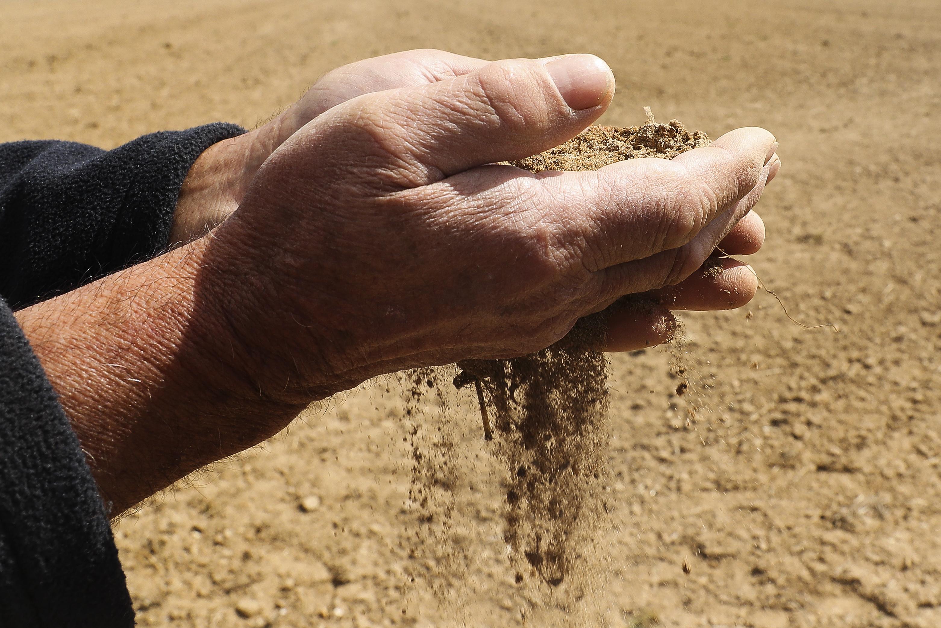 Agricultores do Baixo Alentejo reclamam medidas excecionais