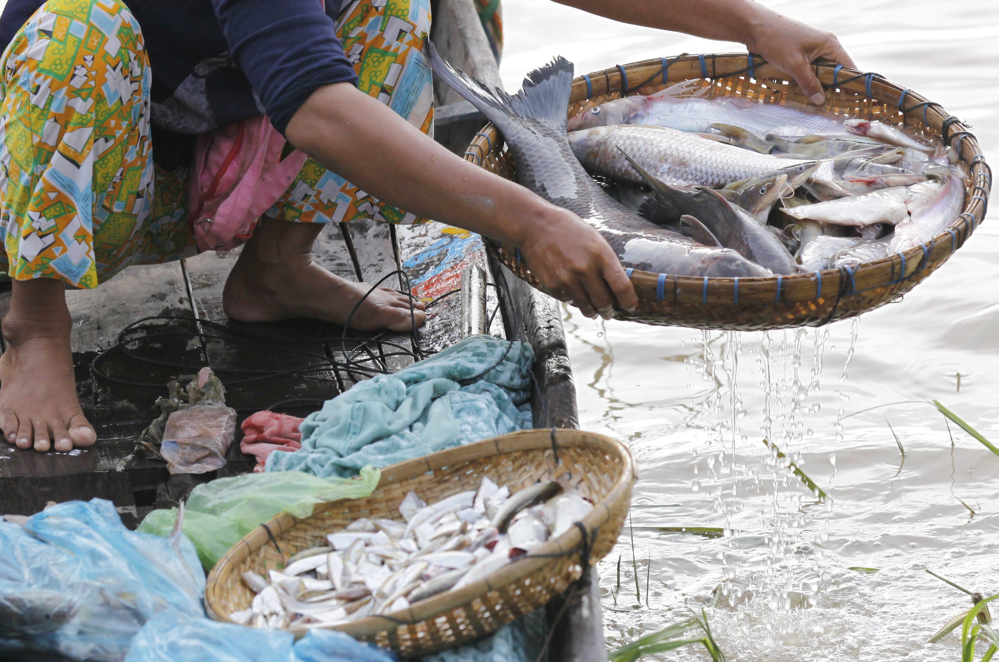 Angola conclui rede de estações para fiscalizar pesca