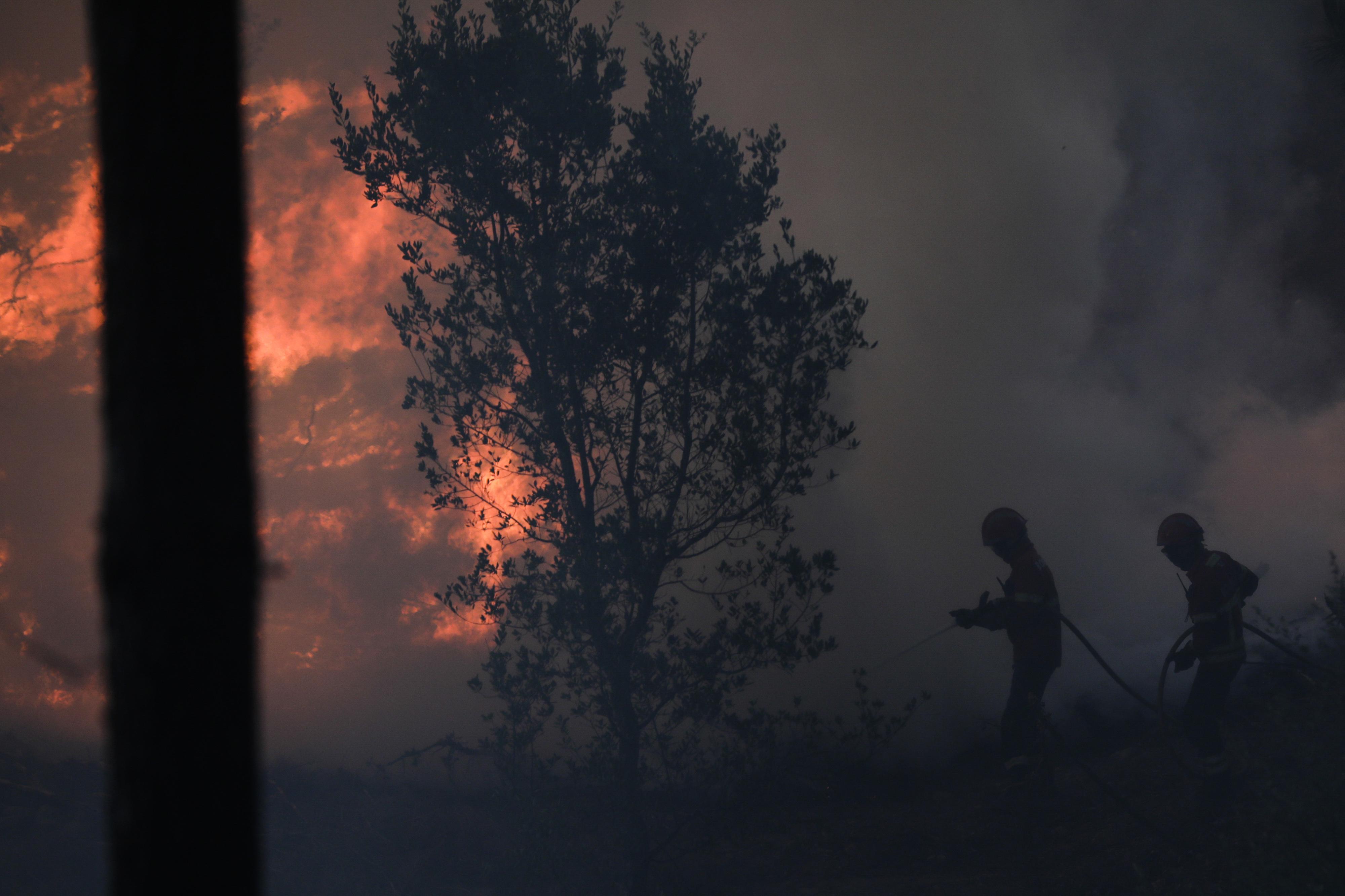 Menos incêndios rurais e menor área ardida desde 2015