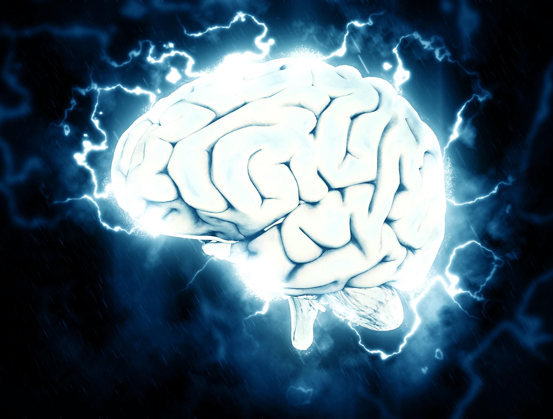 Portugueses descobrem subestruturas cerebrais que podem desmistificar doença de Parkinson
