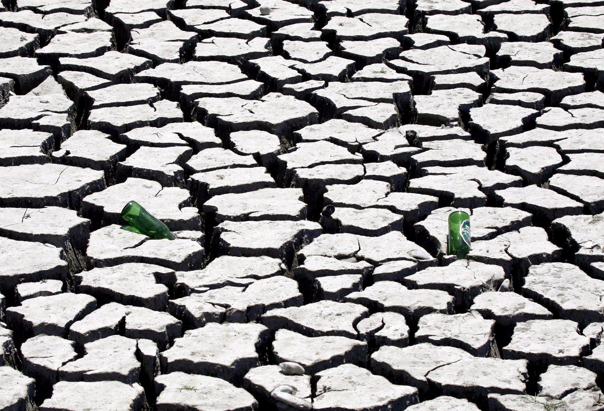 Exportação de açúcar de Moçambique caiu para quase metade por causa da seca