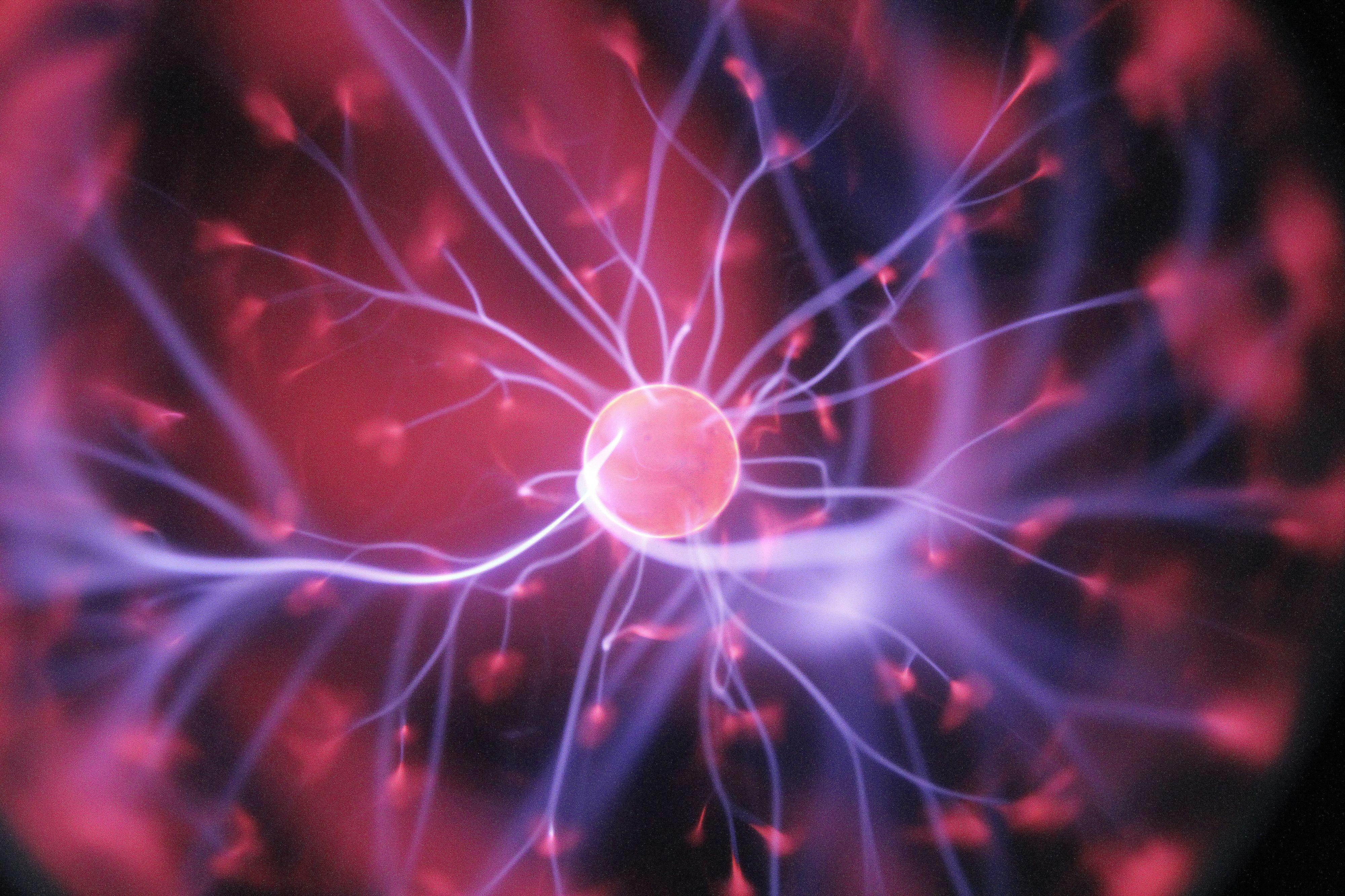 Cientistas do iMM descobrem molécula que ajuda a reverter envelhecimento celular