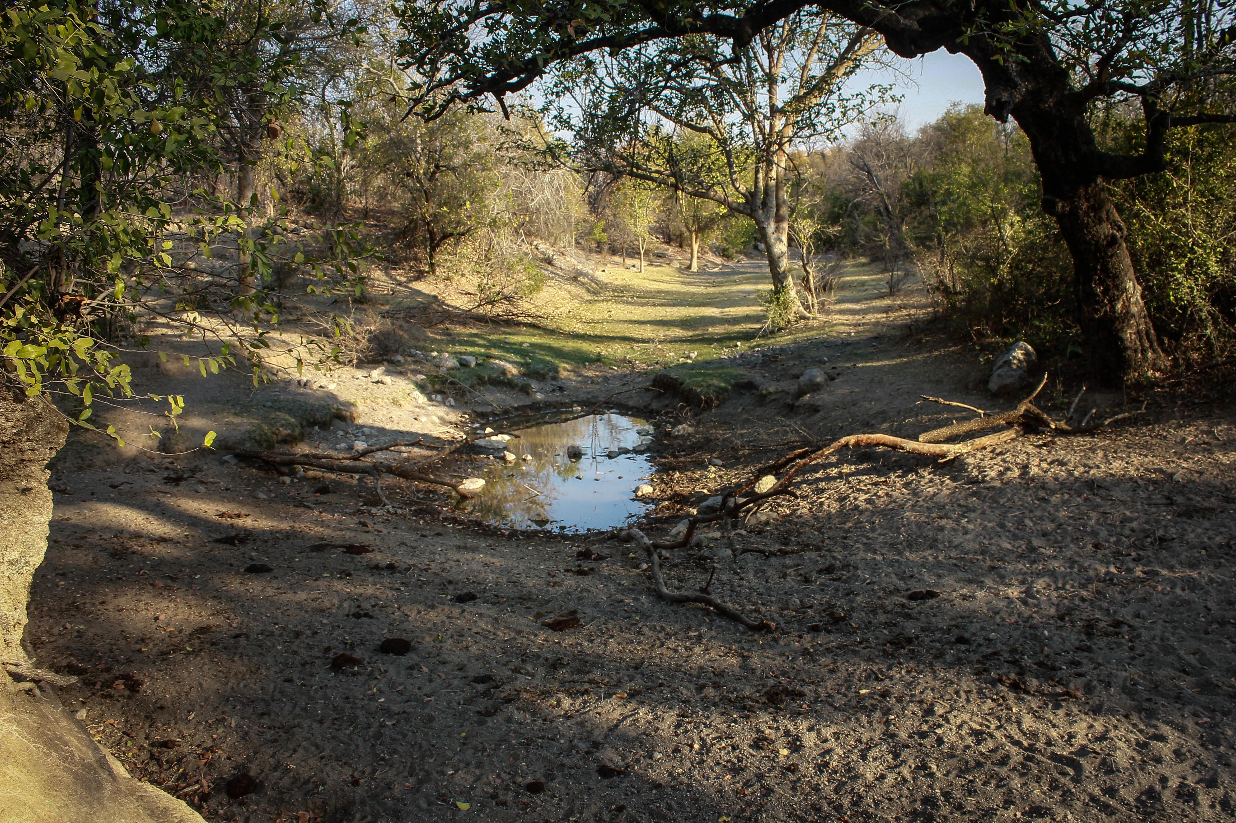 Angola pede apoio à CPLP para combater seca no sul do país