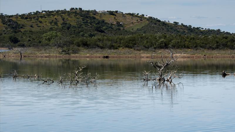 Alqueva: descubra o Grande Lago