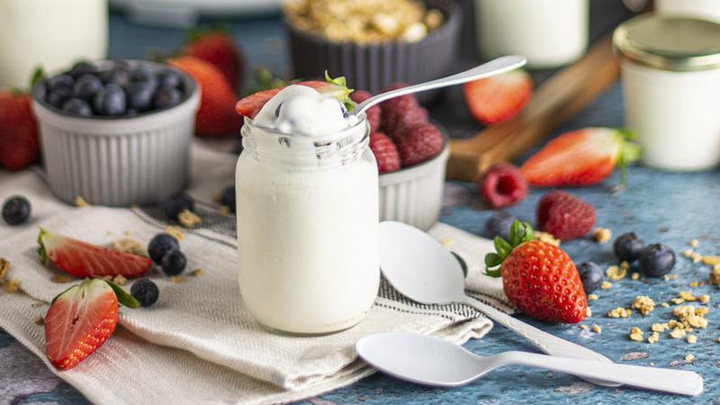 Para ter em casa o verdadeiro iogurte só precisa de dois ingredientes e zero de eletricidade