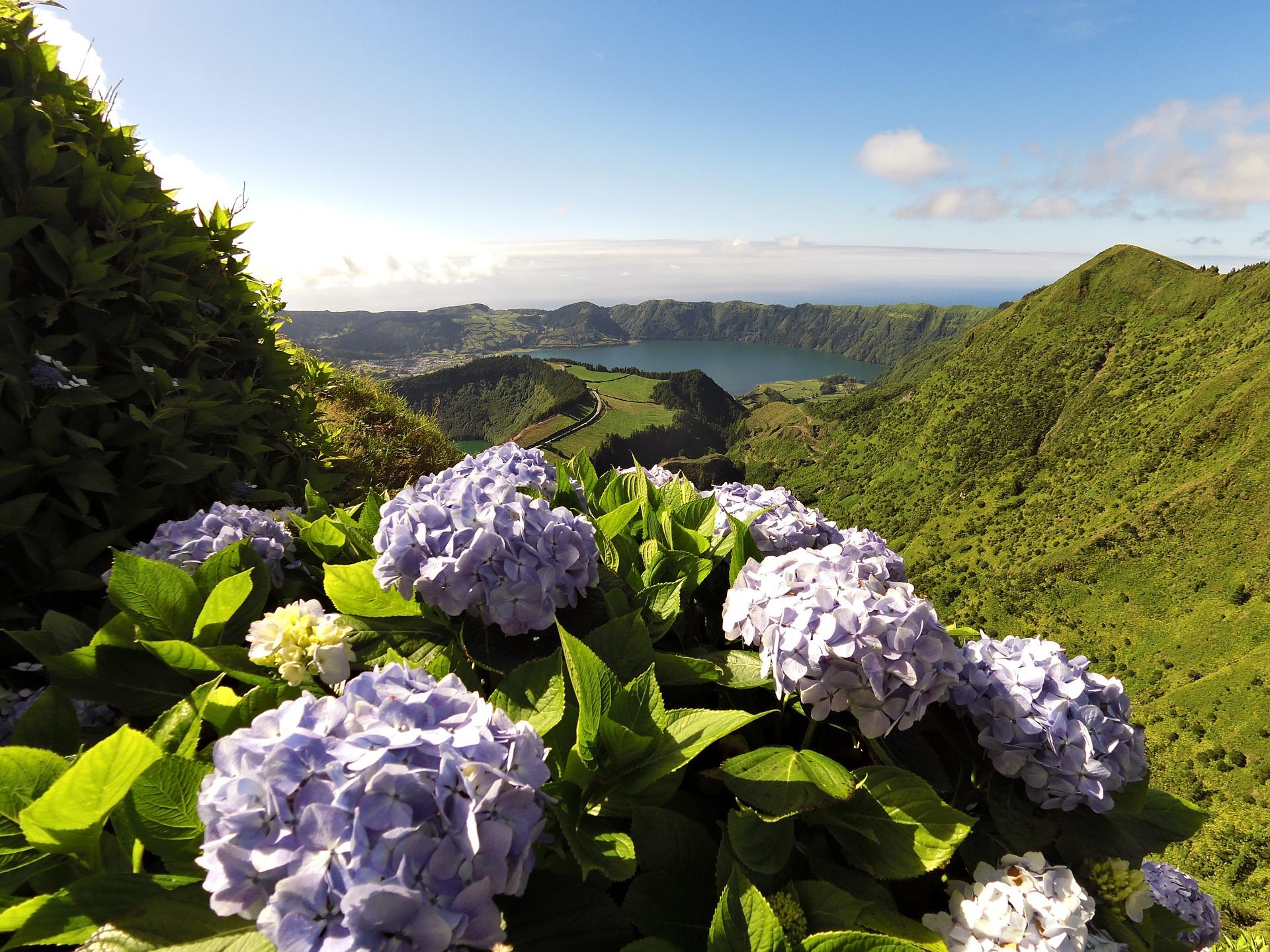 OE2019. Deputados do PS/Açores avançam com propostas de alteração