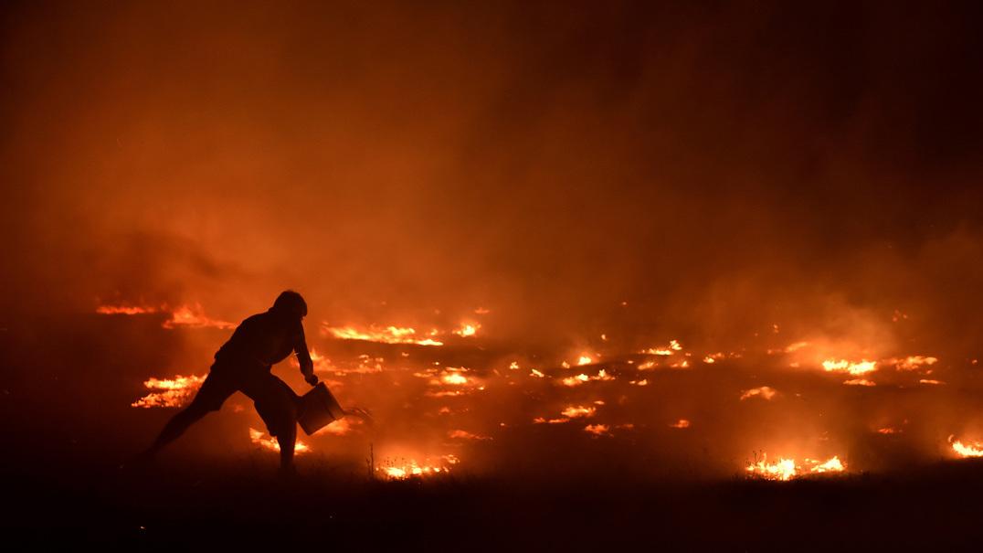 Projeto 'Firextir' quer prevenir grandes fogos florestais