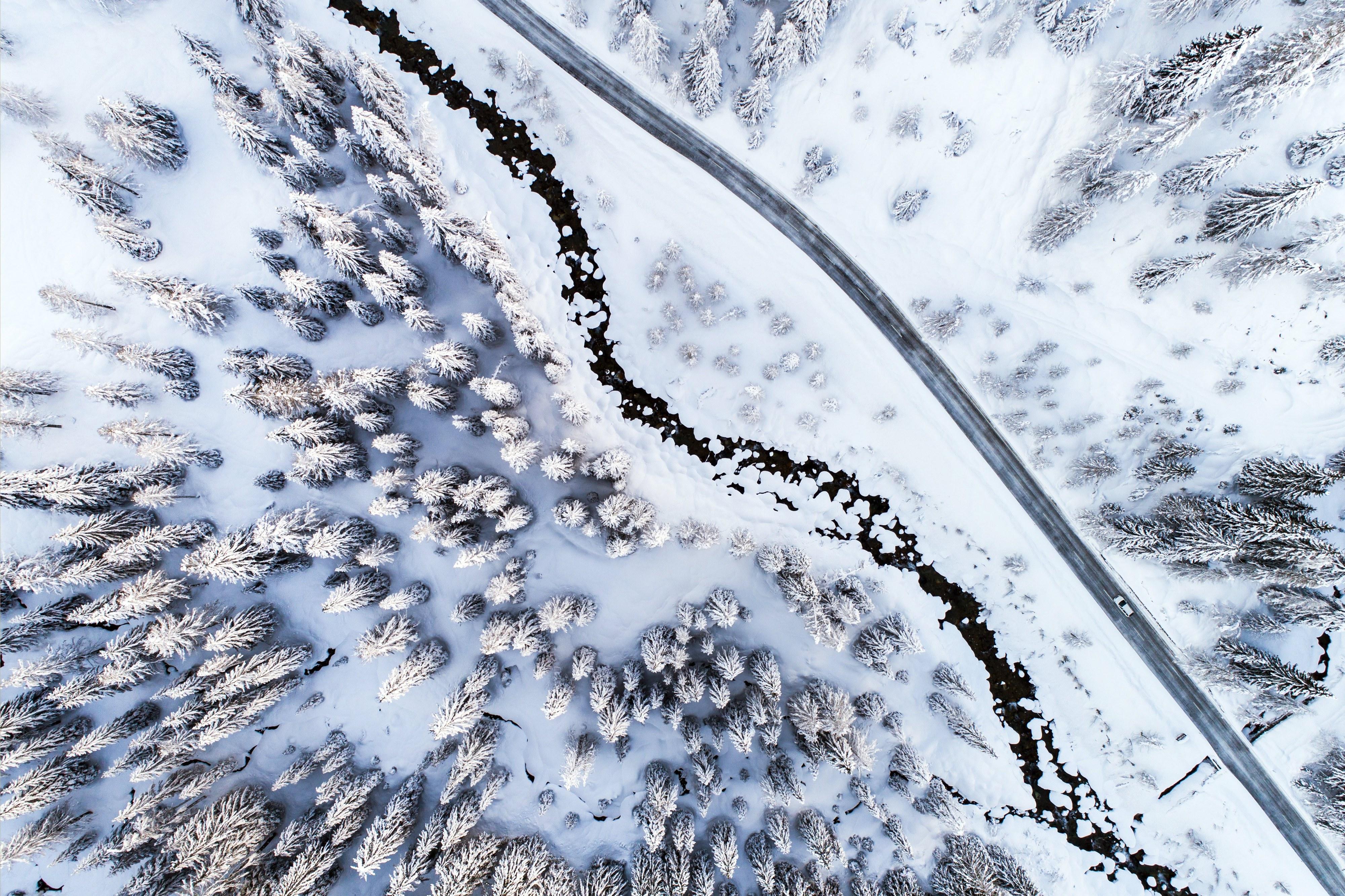 Hoje é dia mundial da neve e estas são as melhores imagens do que já nevou em 2018