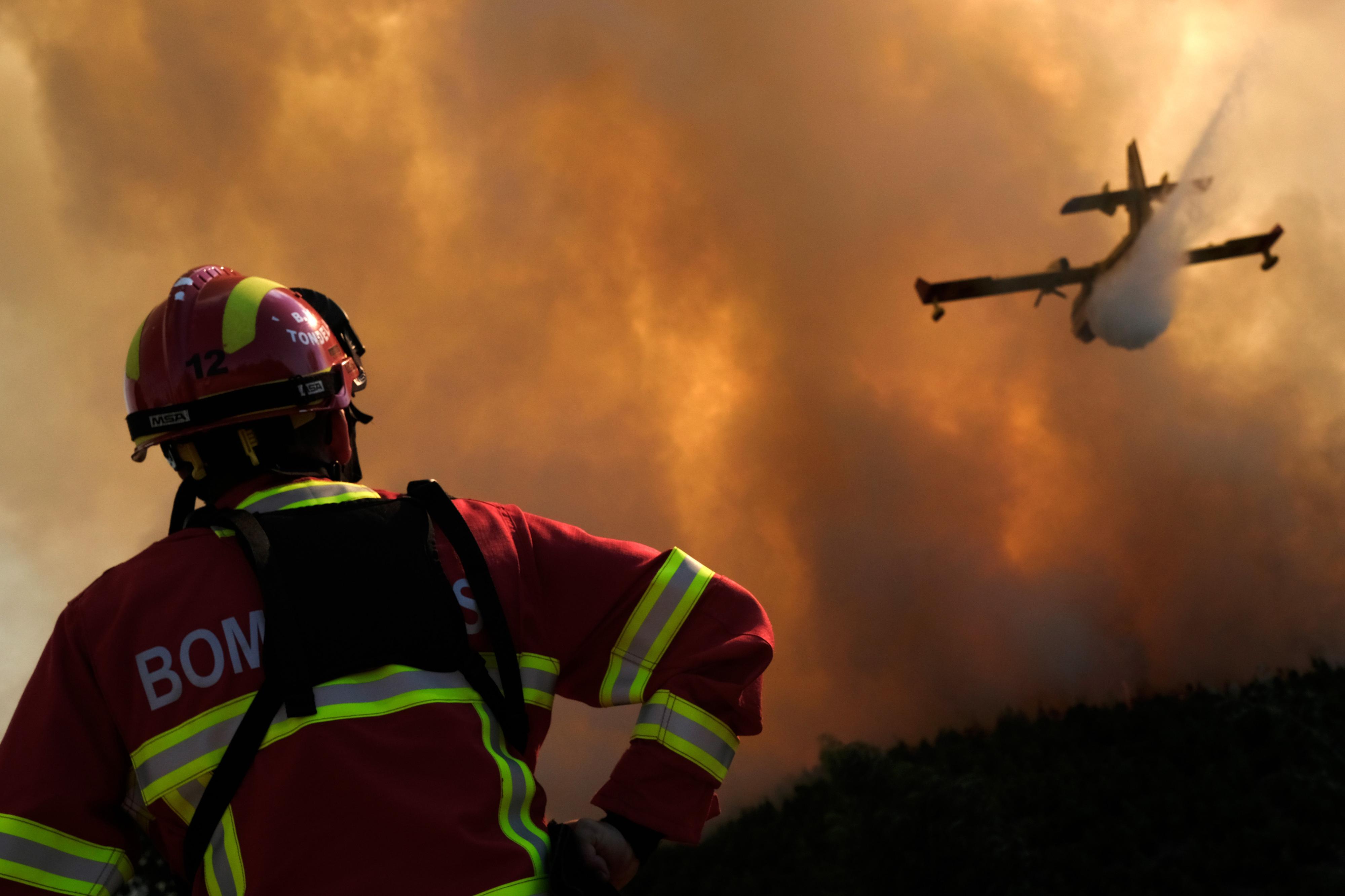 """Estado português revela """"tremenda incompetência"""" em fogos florestais"""