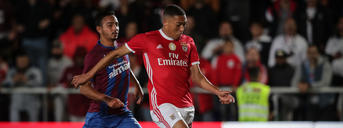 Vídeo: Os golos do triunfo do Benfica sobre o Cova da Piedade