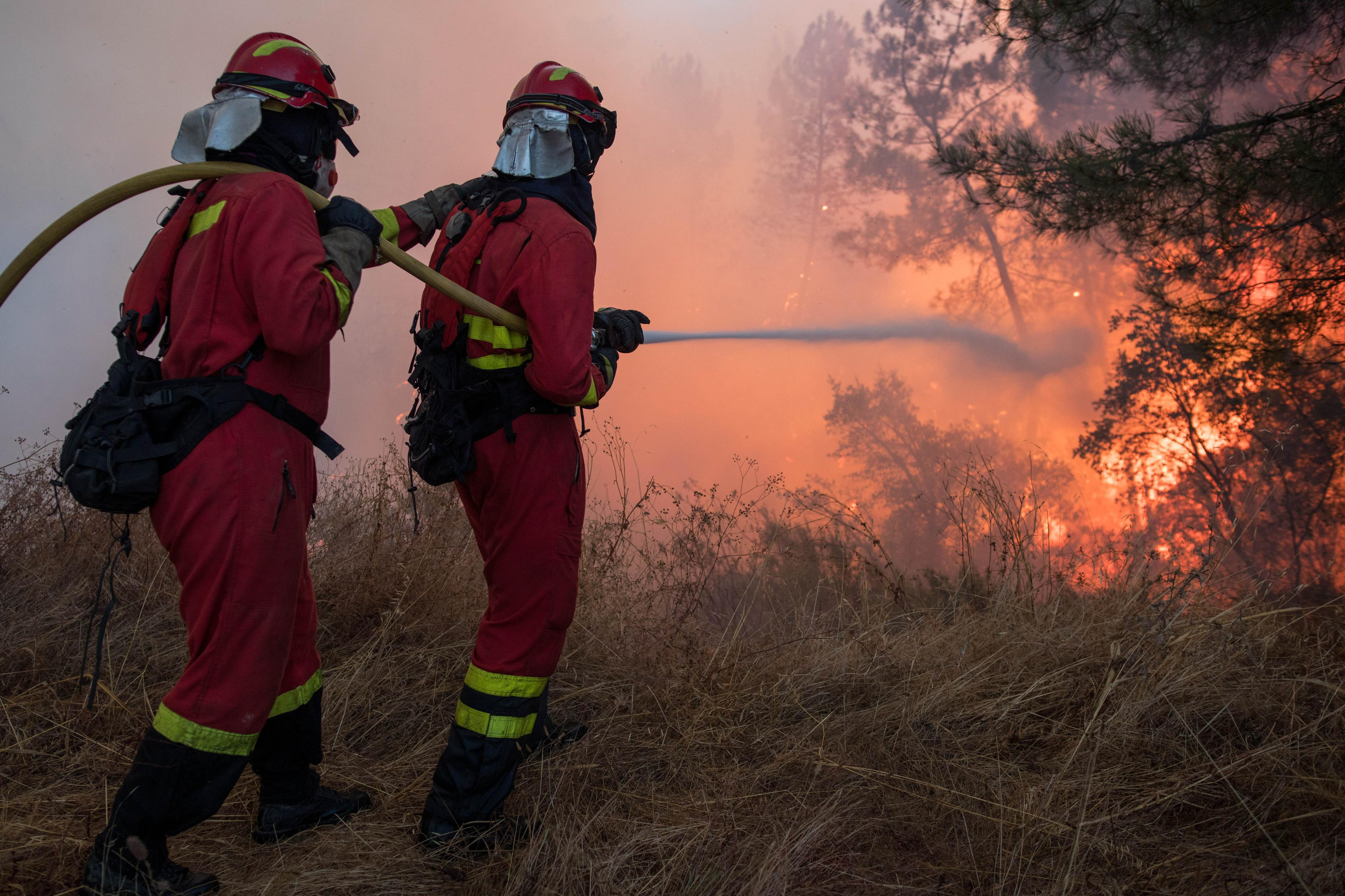 Detido suspeito de fogo florestal na Sertã