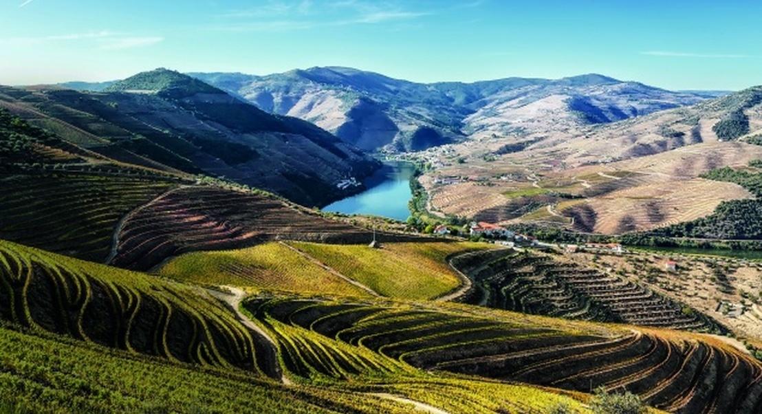 50 razões para amar Portugal: Lugares mágicos e experiências inesquecíveis para férias e escapadas