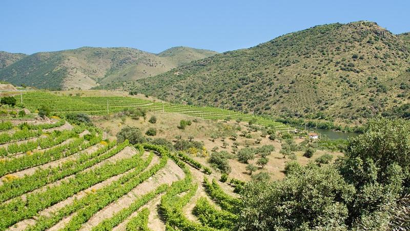 Excesso de azoto ameaça 14% dos locais da Rede Natura 2020 na Península Ibérica ocidental