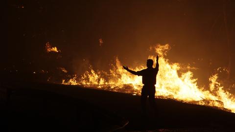 Incêndio em Figueira de Castelo Rodrigo mobiliza centenas de homens