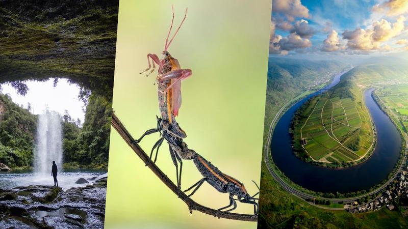 50 fotografias que mostram o melhor da natureza à volta do mundo