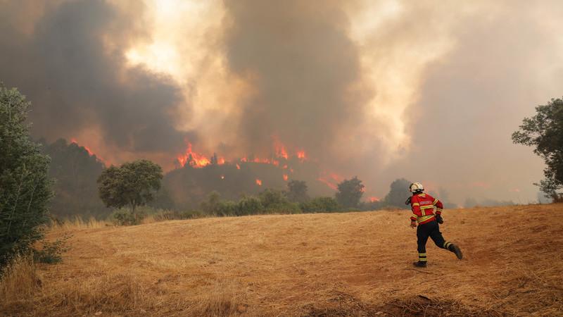 """A maior parte dos incêndios florestais é causada intencionalmente por """"mão criminosa""""?"""