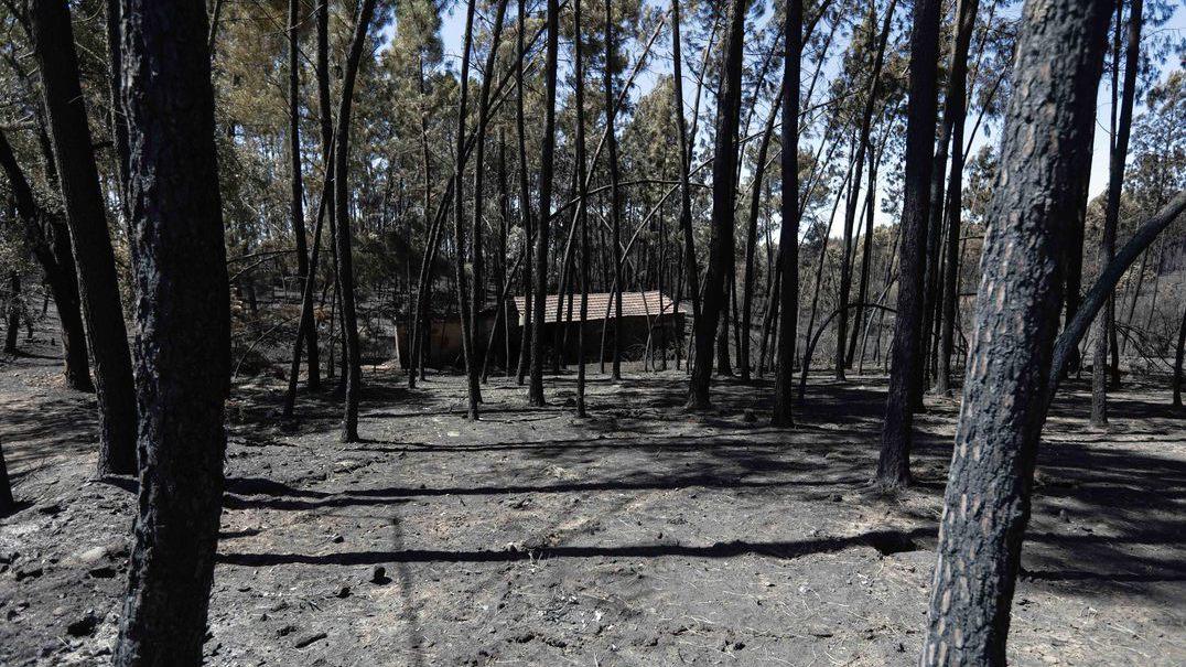 Valongo não esquece o trágico incêndio de junho