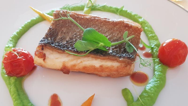 Cadeia de hotéis altera ementa e lança menus de pescado sustentável em Portugal