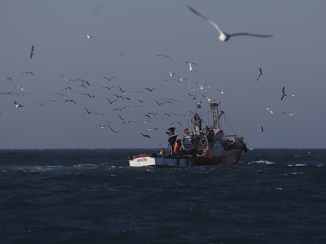 Pescadores açorianos passam a dispor de 228 toneladas de quota de goraz até fim do ano