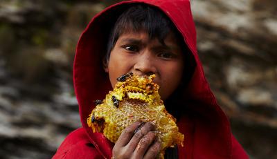 A alimentação humana, a matéria-prima para fotografias ganhadoras em concurso internacional