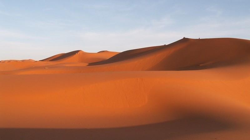 Quem disse que o deserto não tem vida? Descubra os encantos do deserto do Dubai