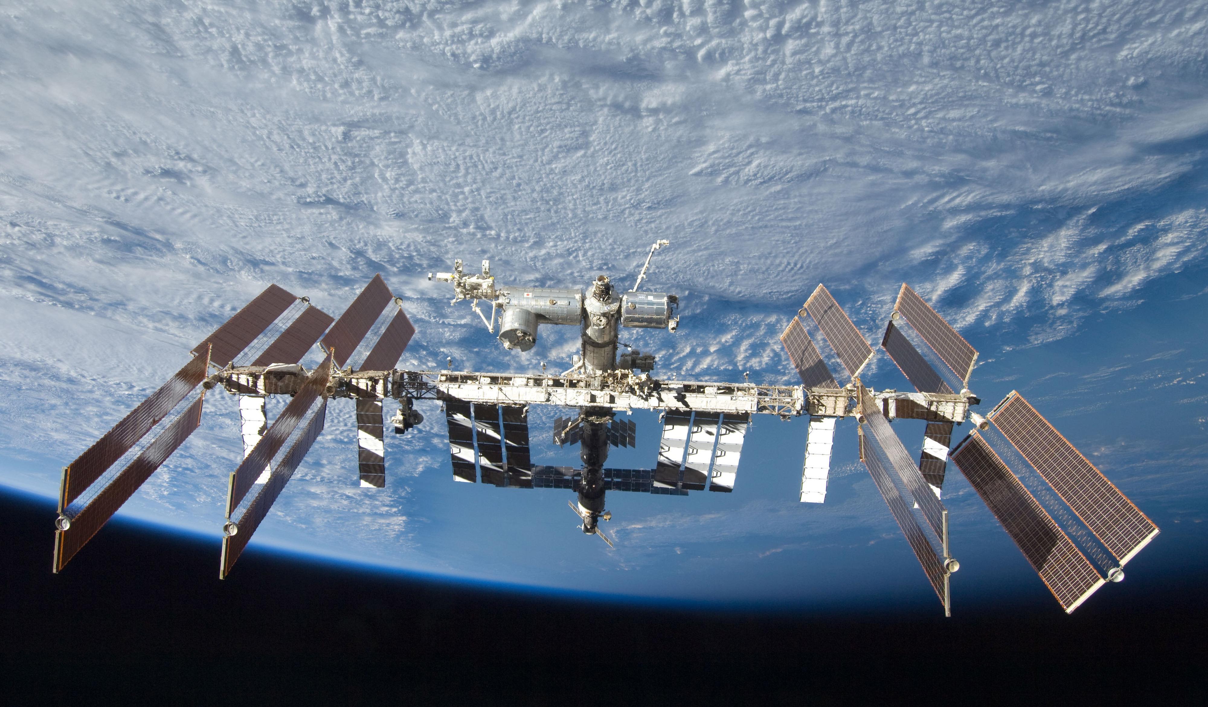 NASA estuda ratos e micróbios para conhecer impacto da falta de gravidade