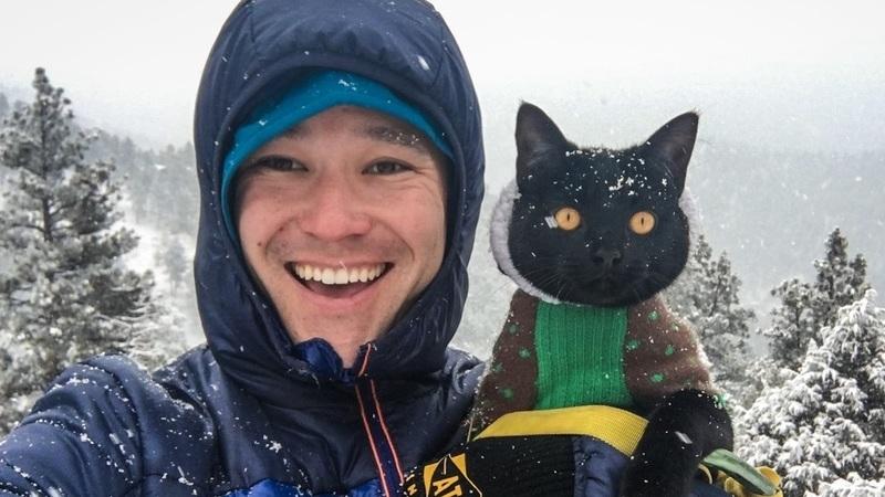 Simon, o gato que viaja há dois anos com o dono. Nada, acampa e escala montanhas