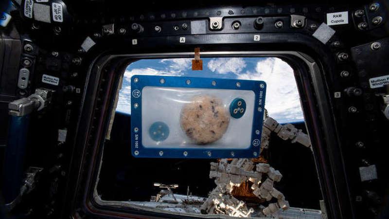 """""""Houston, temos bolachas espaciais"""". Astronautas cozinham pela primeira vez na ISS"""