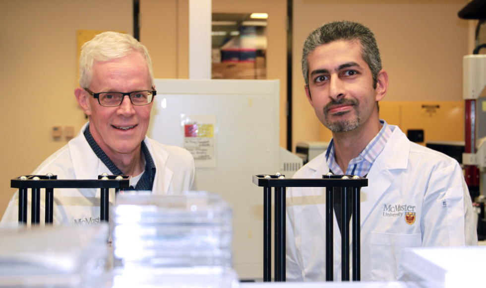 Cientistas criam revestimento que repele bactérias e que é inspirado na folha de lótus