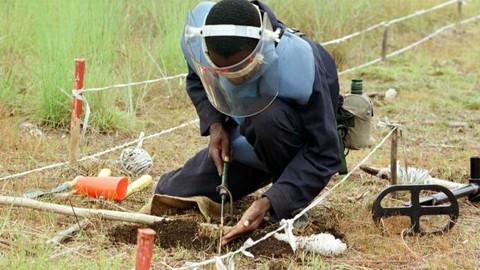 Metade da área minada já está livre de perigo de minas