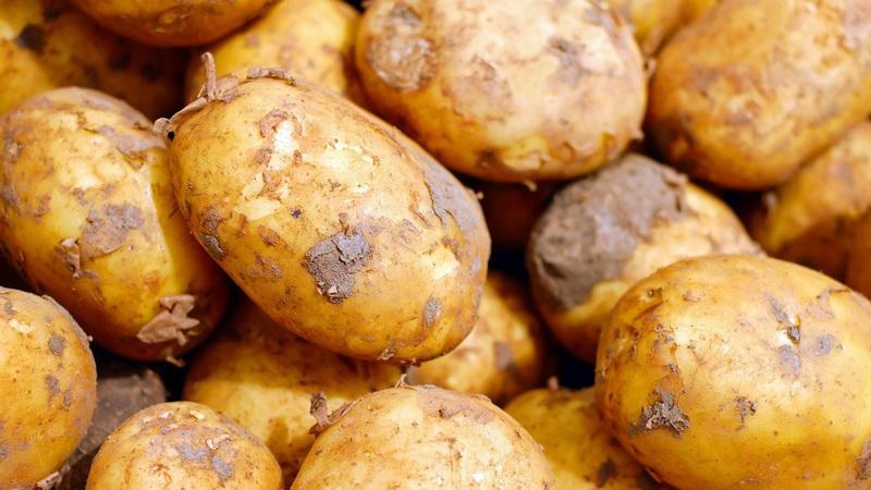Este australiano só comeu batatas durante um ano. E emagreceu 50 quilos