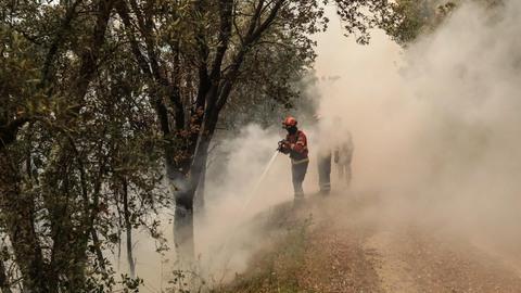 Góis: Cadafaz, o regresso à aldeia onde até os mortos combateram o fogo