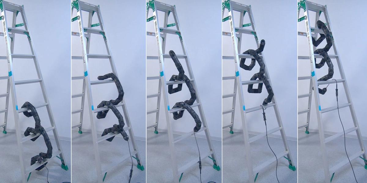 Vídeo: Serpente robótica faz demonstração de agilidade ao subir escadotes