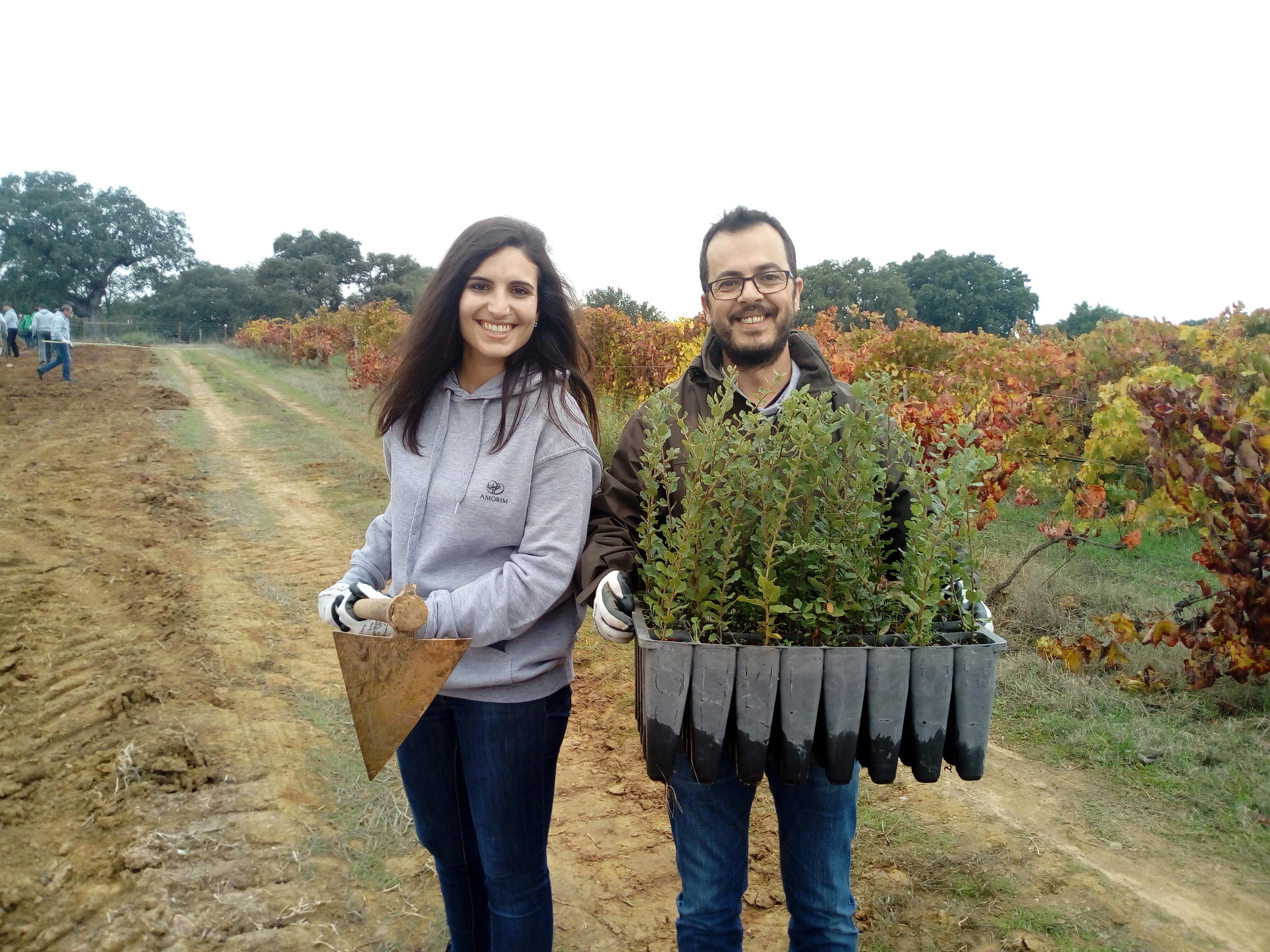 Quercus e Corticeira Amorim juntam-se para plantar 2000 sobreiros em Alcácer do Sal