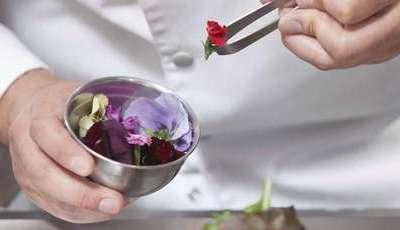 Já petiscou hoje umas flores comestíveis?