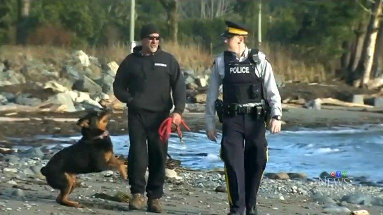 Apareceu mais um pé numa praia canadiana. É o 13.º em dez anos