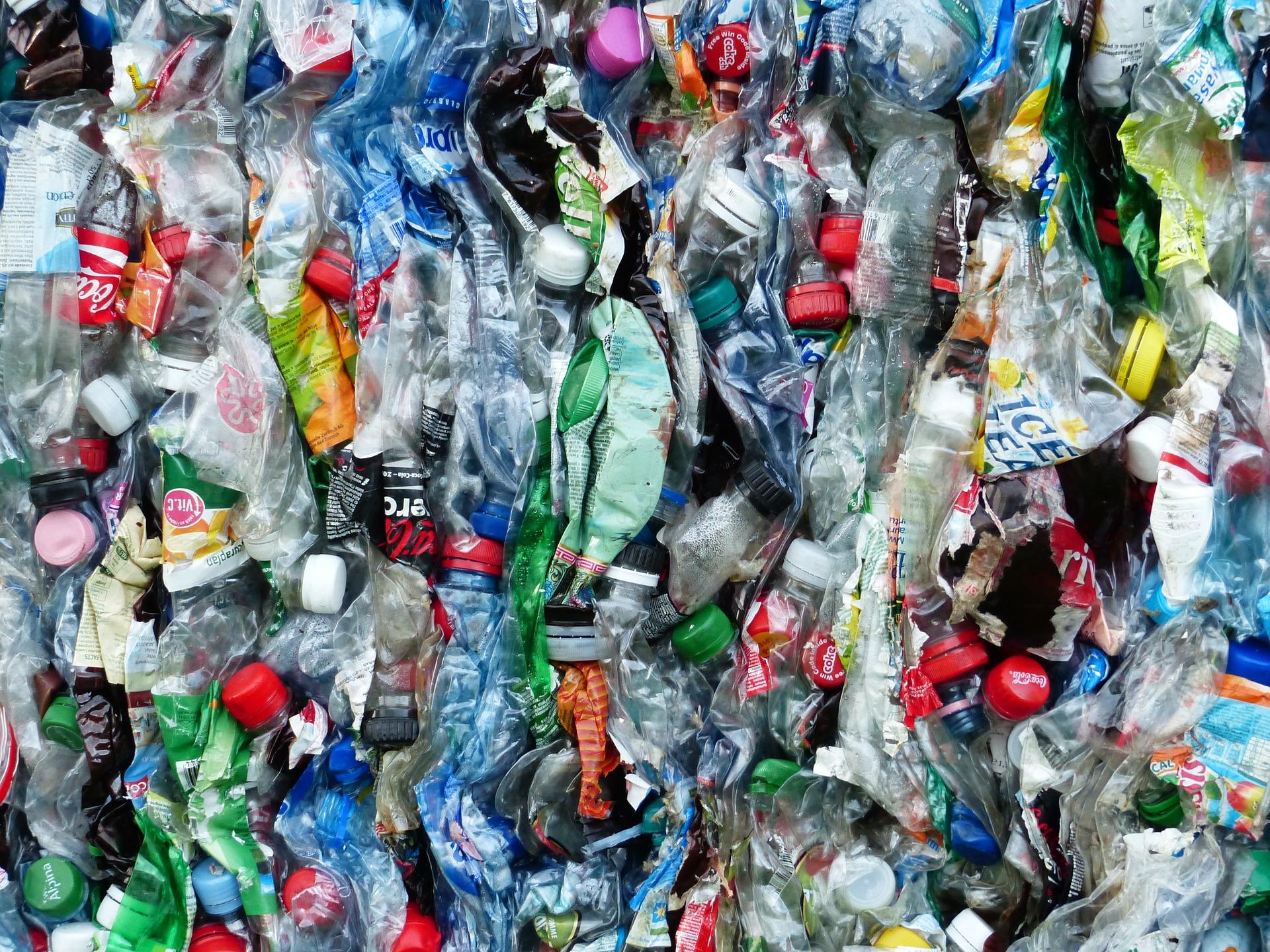 Menos lixo: 19 dicas para reduzir o desperdício no dia a dia