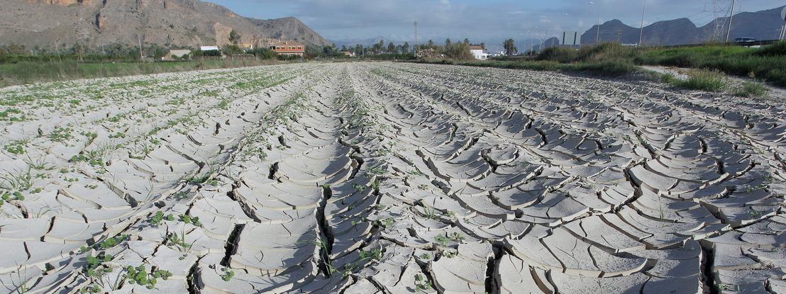 Centenas de cidades já sentem alterações climáticas mas faltam medidas